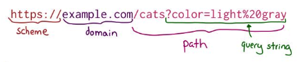 Aprende a entender una URL